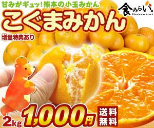 熊本みかん2kg1000円!