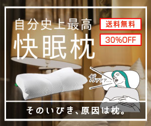\30%OFF/話題のいびき防止枕
